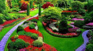 Как создать пейзажный ландшафт