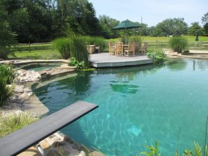 Плавательный пруд в загородном владении